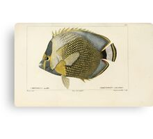 Natural History Fish Histoire naturelle des poissons Georges V1 V2 Cuvier 1849 074 Canvas Print