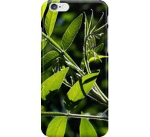 Forest Green iPhone Case/Skin