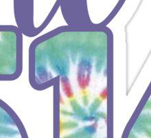 The 516 Area Code tie dye Sticker