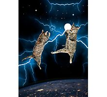 CAT FIGHT Photographic Print