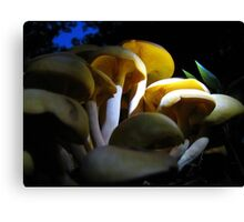 Looking For  Bioluminescence Canvas Print