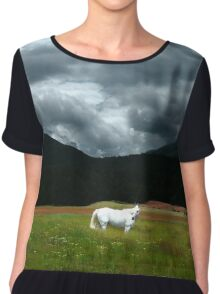 White Horse Framed by a Glorious Dream Chiffon Top