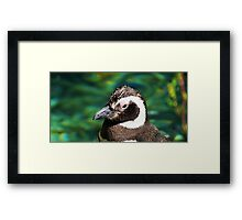 Penguin Pop Framed Print