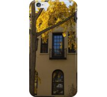 Yellow on Yellow - Golden Ginkgo Biloba and an Elegant Facade iPhone Case/Skin