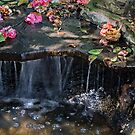 Camellia Waterfall by CarolM