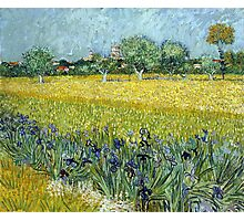 Vincent van Gogh Field of Flowers near Arles Photographic Print