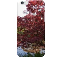 Spring japanese maple tree by a pond. iPhone Case/Skin