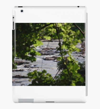 river through the trees iPad Case/Skin