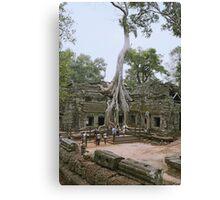 Cambodian Tomb Raider Canvas Print