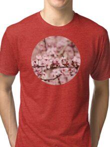 Vintage Cherry Blossoms Tri-blend T-Shirt