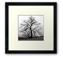 WINTER PRINCESS TREE Framed Print