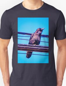 Crow on Wires T-Shirt