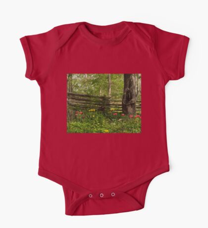 Colorful Tulips and a Rustic Fence - Enjoying the Beauty of Spring One Piece - Short Sleeve