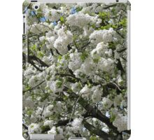 Beautiful White Blossoms iPad Case/Skin