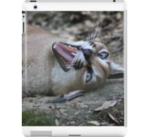 Playful Lynx iPad Case/Skin