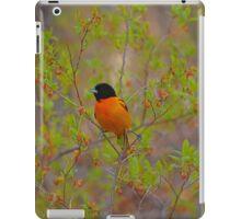 Icterus Galbula - Baltimore Oriole | Montauk, New York iPad Case/Skin