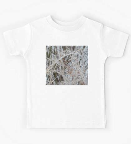 Ice Storm 2013 - Pale Frozen Grasses  Kids Tee