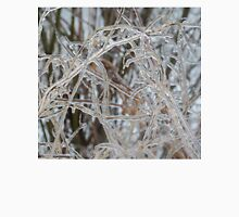 Ice Storm 2013 - Pale Frozen Grasses  Unisex T-Shirt