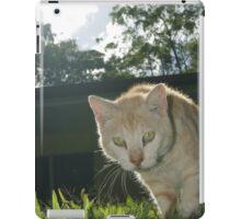 Ringo the Cat iPad Case/Skin