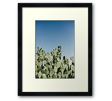Large Prickly Pear Cactus against Blue Sky Framed Print