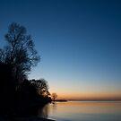 Orange Dawn Chasing the Blue Night Away by Georgia Mizuleva