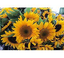 Farmers' Market Bouquet Photographic Print