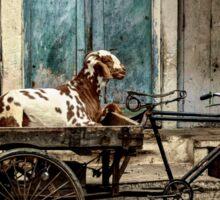 Goat on Wheels Sticker