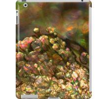 Abalone Nacre iPad Case/Skin