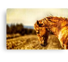 The Weight of the World Canvas Print