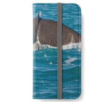 Whale Diving 2 iPhone Wallet/Case/Skin