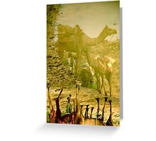 Camel Reflections Greeting Card