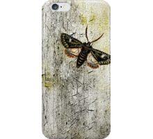 My Foolish Notion iPhone Case/Skin