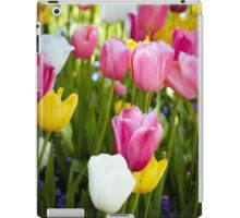 Pink White Yellow Tulips iPad Case/Skin