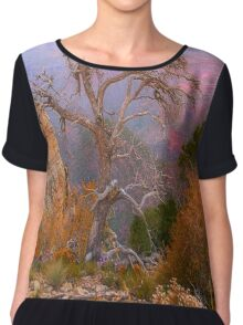 Lay My Ashes Here Chiffon Top