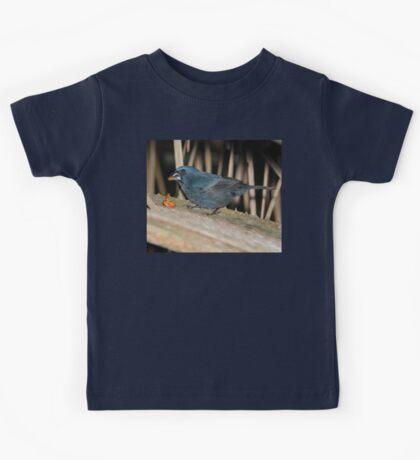 Male Blue-Black Grosbeak Kids Tee