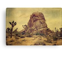 Joshua Trees In The Desert Canvas Print