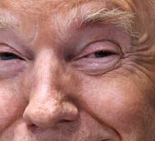 Donald Trump Face Cutout Sticker