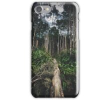 Into The Wilds iPhone Case/Skin