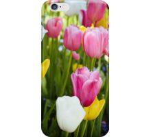 Pink White Yellow Tulips iPhone Case/Skin