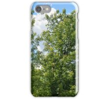 Green trees in the park. iPhone Case/Skin