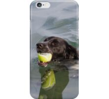 Dog swims with ball in mouth iPhone Case/Skin