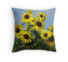 Sunny Pillow Throw Pillow