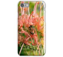 Grevillea with Bee  iPhone Case/Skin