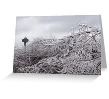 Niagara's Artistic Hand - Frozen Mist Sculpted on Tree Branches Greeting Card