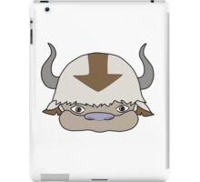 avatar - appa colour iPad Case/Skin