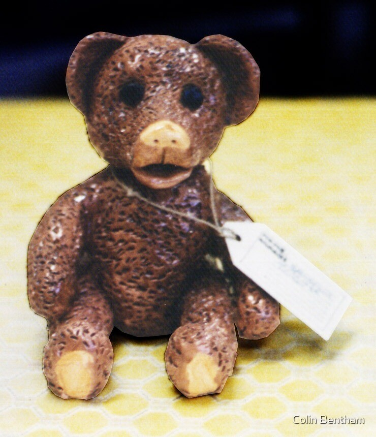 Teddy 4: Lost by Colin Bentham