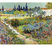 Vincent van Gogh Garden at Arles Photographic Print