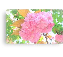 Pink Double Cherry Blossoms ( Pencil Drawing ) Canvas Print