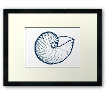 Seashell, sea shell, nature ocean aquatic underwater vector. Hand drawn marine engraving illustration on white background Framed Print