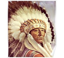 Native. American. Indian Chief, Native American tribe, Poster